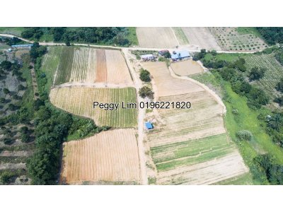 11.5acres Agricultural Land For Sale , Batang Kali, Selangor