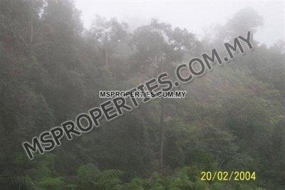 Fraser's Hill, Pahang