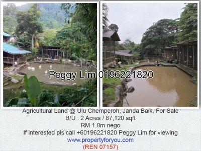 Agricultural Land @ Ulu Chemperoh, Janda Baik, Bentong, Pahang