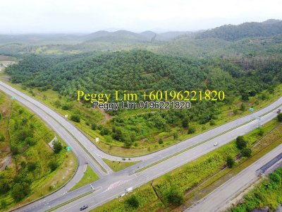 391.385 Palm Oil Land For Sale, RM 30,000,000 , Sri Jaya, Pahang.