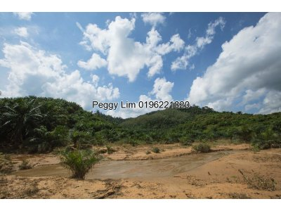 Kuala Kerai 63acres Agricultural Land For Sale, Kelantan