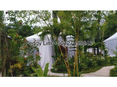 52 Acres Land for sale at Benum Hill Musang King Resort, Raub,Pahang
