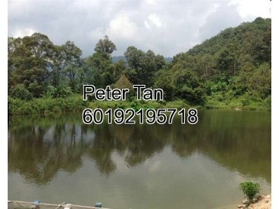 Agricultural Land, 9 Acres - Mantin, Negri Sembilan