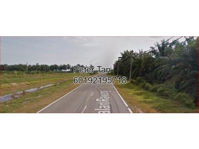 [4.5 acres] Agricultural Land at Bestari Jaya, Selangor