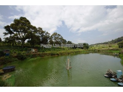 7.3126acres, Agricultural Land, Broga, Semenyih